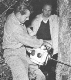 CHUCK CUTTING DOWN A TREE ('52)